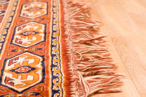 Motif Patte Ours sur tapis